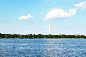 Homes for Sale in Washington, DC