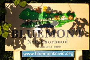 Homes for Sale in Bluemont