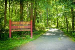 Homes for Sale in Dunn Loring, VA