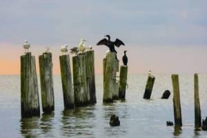 Calvert Beach, MD