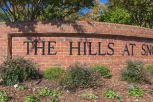 Hills at Snowden