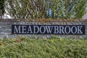 Meadowbrook