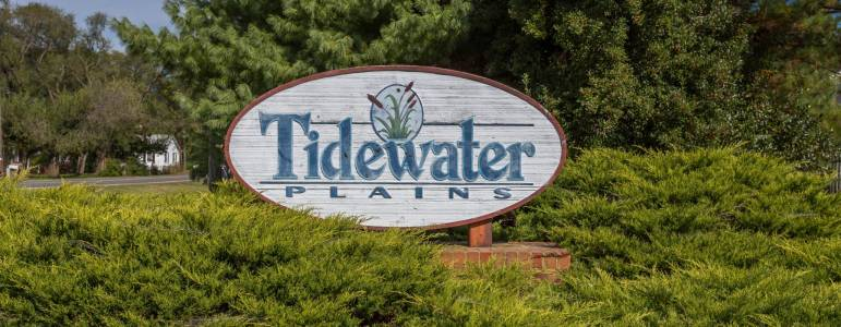 Tidewater Plains