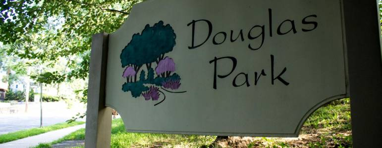 Homes for Sale in Douglas Park