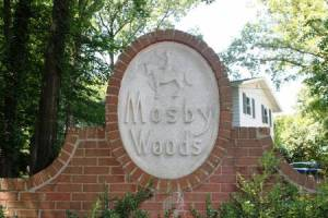 Homes for Sale in Mosby Woods