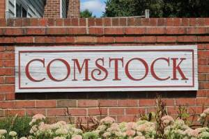 Homes for Sale in Comstock