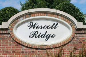 Homes for Sale in Courts at Wescott Ridge