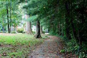 Homes for Sale in Fairfax Woods