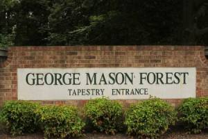Homes for Sale in George Mason Forest