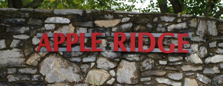 Homes for Sale in Apple Ridge