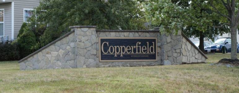 Homes for Sale in Copperfield