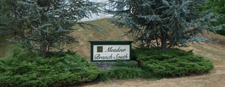 Homes for Sale in Meadow Branch