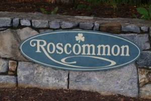 Homes for Sale in Roscommon