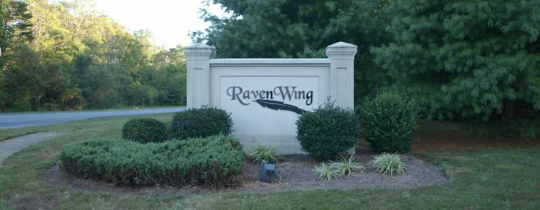 Homes for Sale in Raven Wing