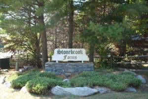 Homes for Sale in Stonebrook Farms