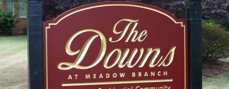 Homes for Sale in The Downs at Meadow Branch