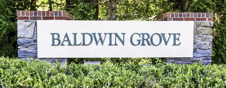 Homes for Sale in Baldwin Grove