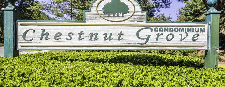 Homes for Sale in Chestnut Grove