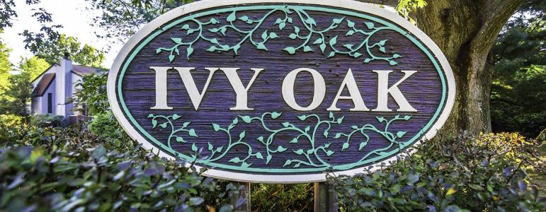 Homes for Sale in Ivy Oak