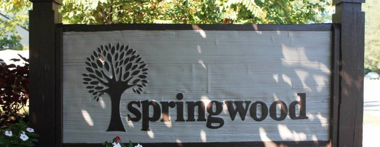 Homes for Sale in Springwood