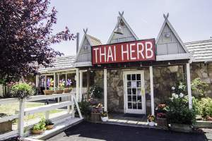 Thai Herb Restaurant in Mt. Vernon, VA.