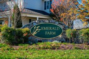 Homes for Sale in Emerald Farm