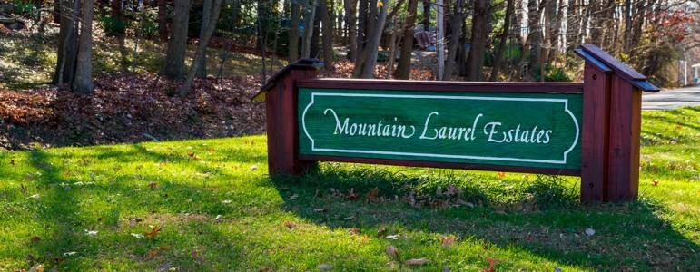 Homes for Sale in Mountain Laurel Estates