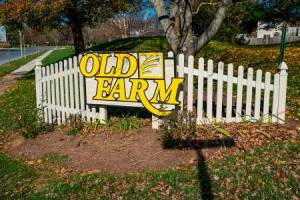 Homes for Sale in Old Farm Station