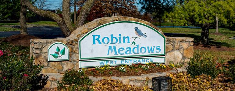 Homes for Sale in Robin Meadows Cluster