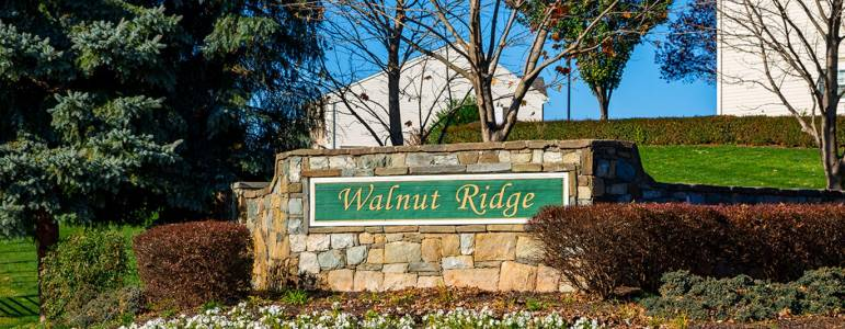 Homes for Sale in Walnut Ridge