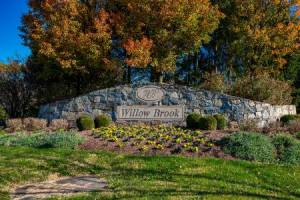 Homes for Sale in Willow Brook