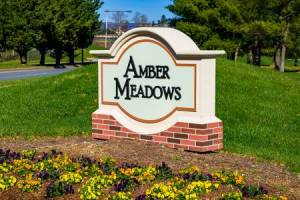 Homes for Sale in Amber Meadows