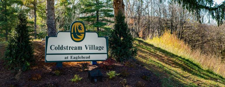 Homes for Sale in Coldstream Village