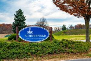 Homes for Sale in Eaglehead Summerfield