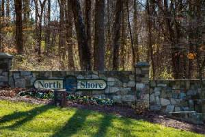 Homes for Sale in North Shore