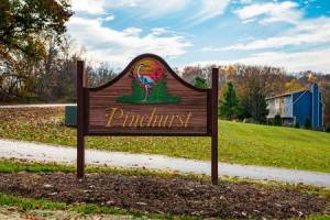 Homes for Sale in Pinehurst