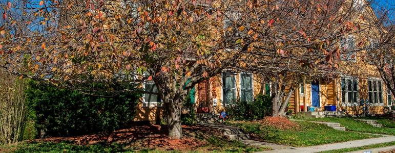 Homes for Sale in Villas Lake Anita Louise