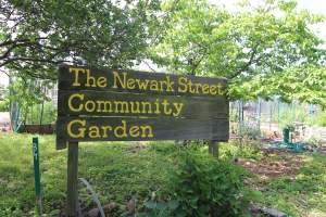 Newark Street Garden in Cathedral/Wesley Heights