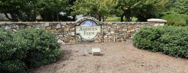 Homes for Sale in Ashburn Farm