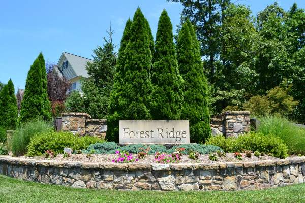 Homes for Sale in Forest Ridge (20164 Loudoun, VA Zip Code)