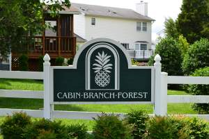 Homes for Sale in Cabin Branch Forest (20164 Loudoun, VA Zip Code Guide)