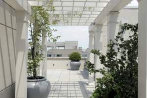 Sonata Condo Rooftop