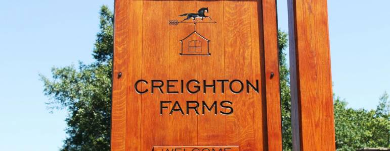 Homes for Sale in Creighton Farms