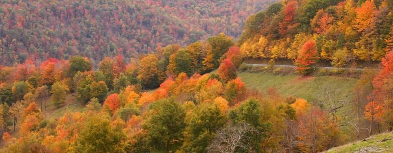 Shepherdstown, West Virginia