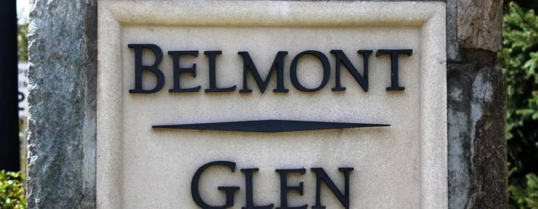 Homes for Sale in Belmont Glen