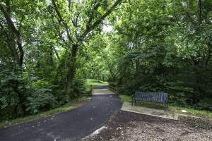 Stream Valley Park Path in Broadlands Community