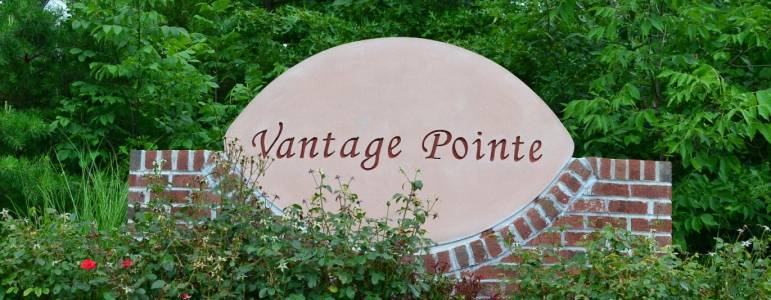 Homes for Sale in Vantage Pointe