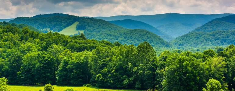Homes for Sale in Caroline County, VA