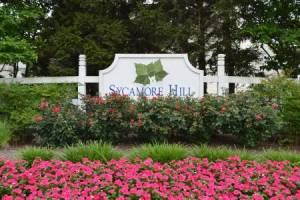 Homes for Sale in Sycamore Hill