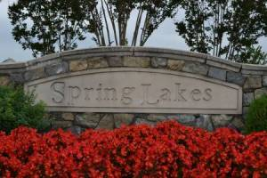 Homes for Sale in Spring Lakes